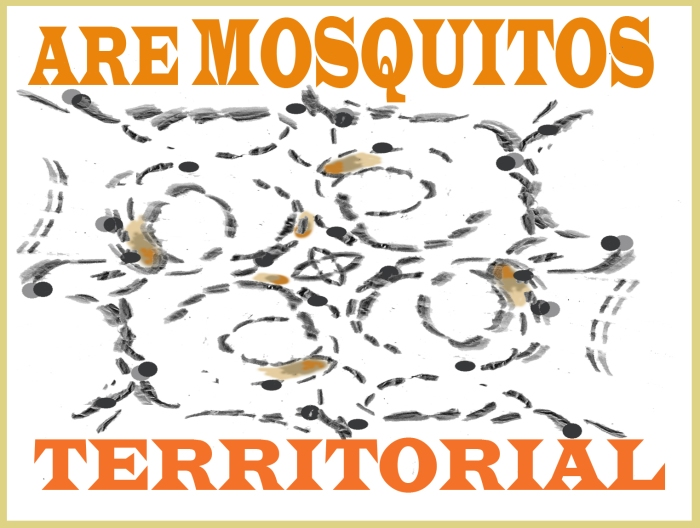 Mossies territoriality